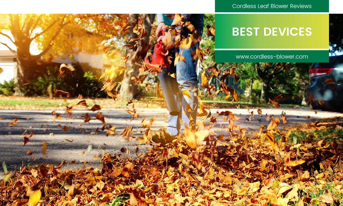 best cordless leaf blower reviews teaser with man blowing leaves and integrated seal