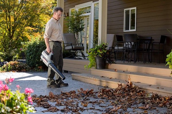 40V cordless leaf blower reviews - opening image of review category performance