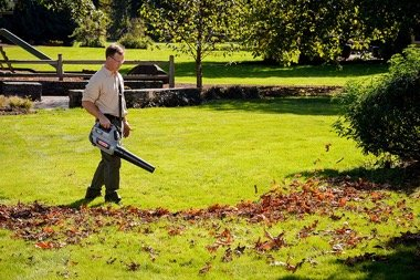 Oregon cordless blower used by a man on a meadow.