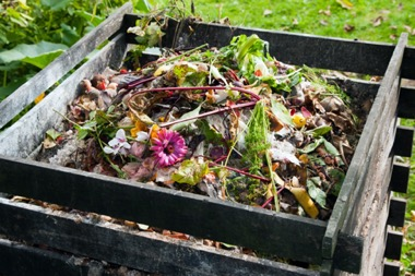 composting-fall-foliage